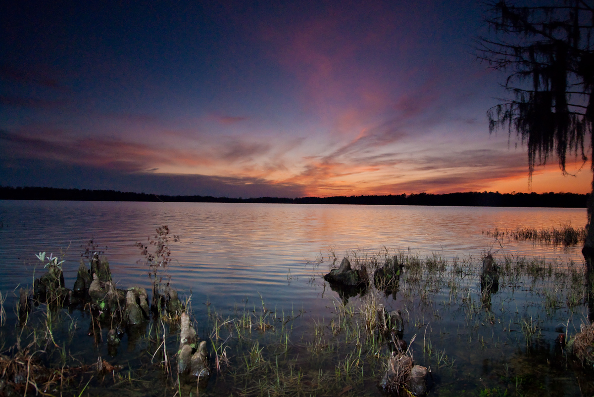 Florala Alabama Landscape photo of sunset cypress trees and water