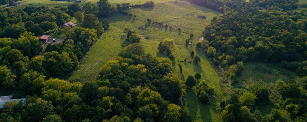 , Brush Creek TN Land Video Preview | Mike Eaton & Blackwell Realty, Don Wright Designs & Photography, Don Wright Designs & Photography
