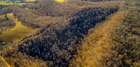 south point ridge land tract for sale hampshire tn - wes stone