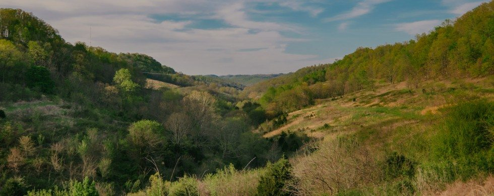 , 155 Hackett Valley Rd | TN Farm Property For Sale, Don Wright Designs & Photography, Don Wright Designs & Photography