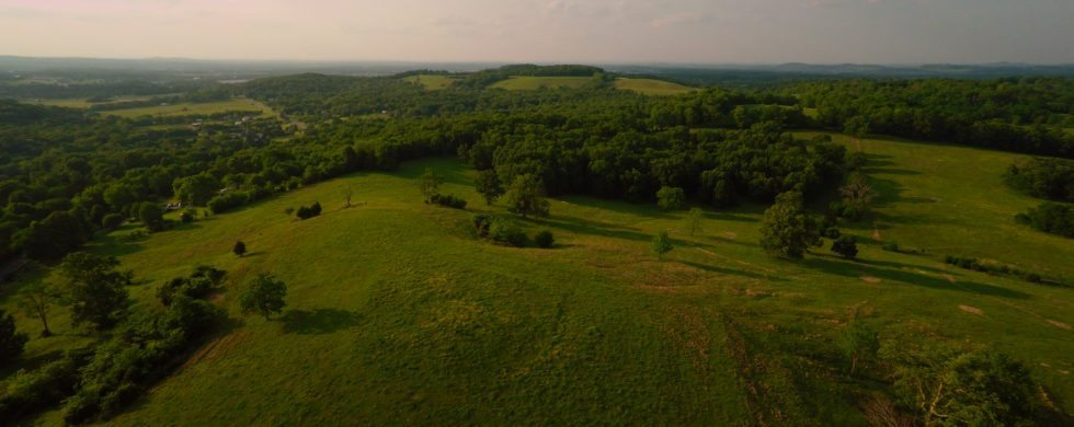 , Lebanon Farm For Sale | 4531 Tater Peeler Rd | 154+ acres Cattle, Don Wright Designs & Photography